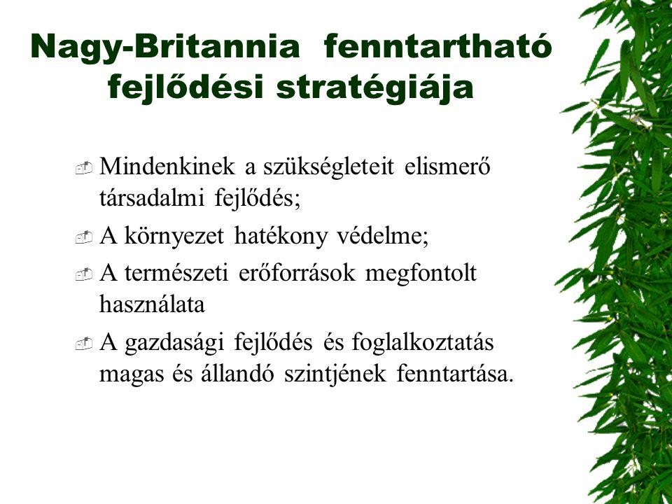 Nagy-Britannia fenntartható fejlődési stratégiája