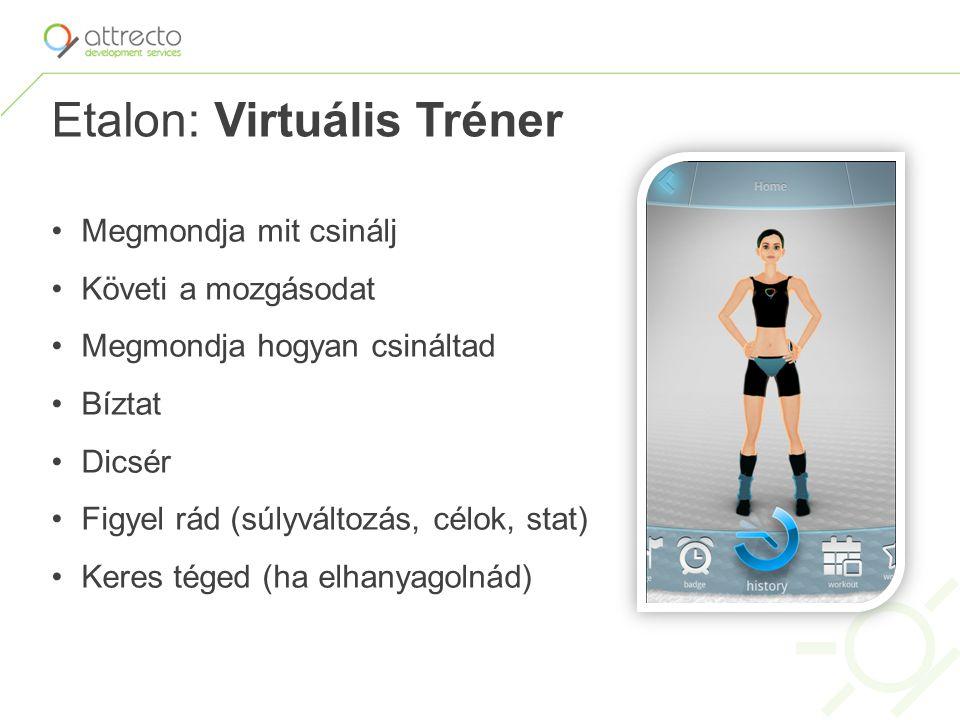 Etalon: Virtuális Tréner