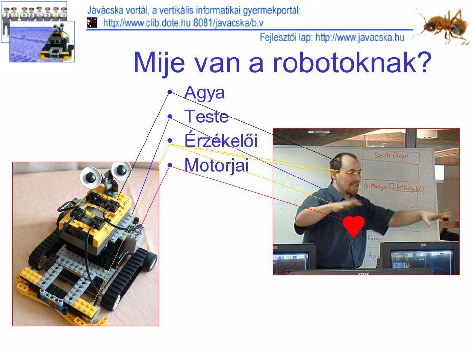 Mije van a robotoknak Agya Teste Érzékelői Motorjai