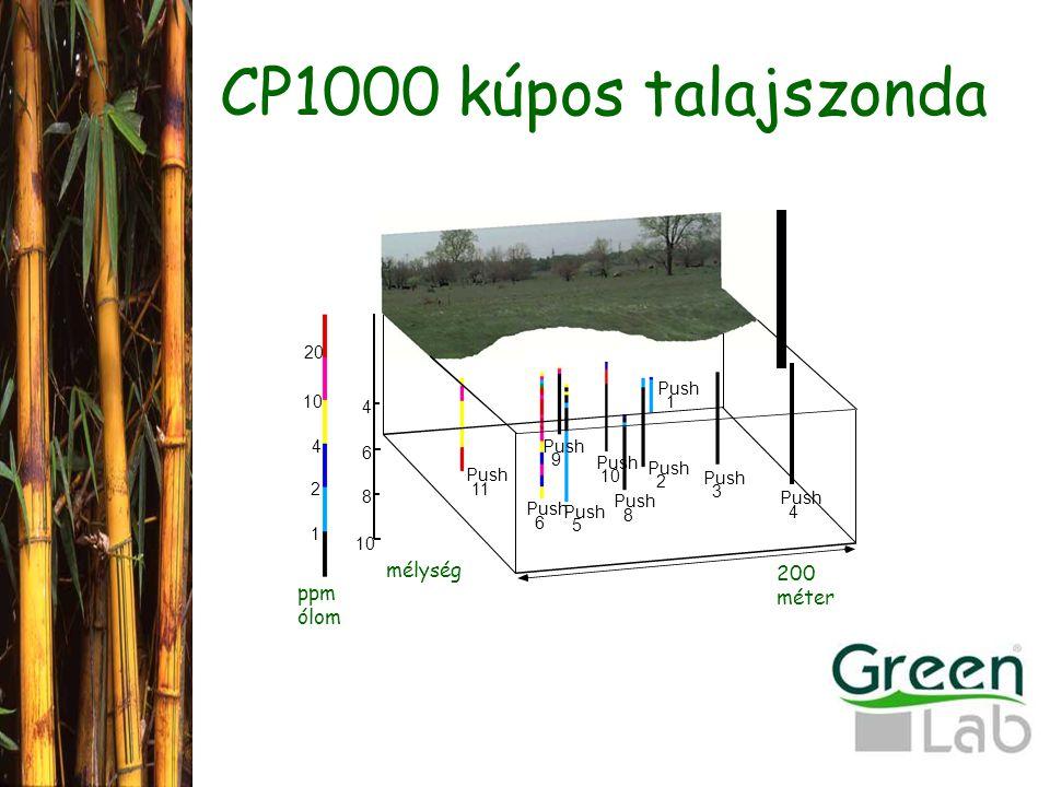 CP1000 kúpos talajszonda mélység 200 méter ppm ólom Push 11 6 5 9 10 8