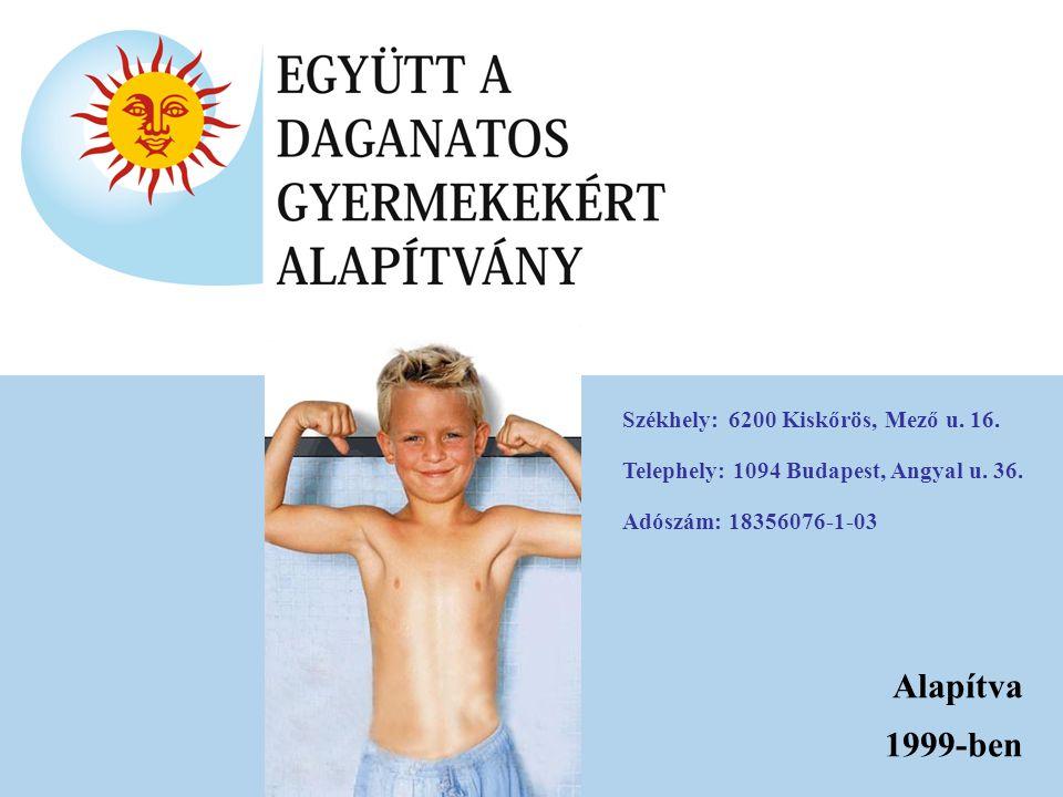 Alapítva 1999-ben Székhely: 6200 Kiskőrös, Mező u. 16.