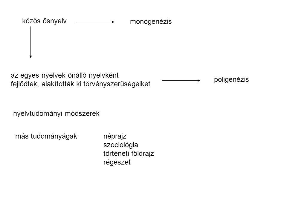 közös ősnyelv monogenézis. az egyes nyelvek önálló nyelvként. fejlődtek, alakították ki törvényszerűségeiket.