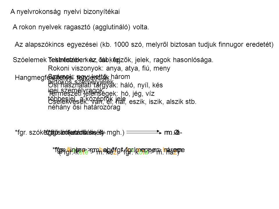 A nyelvrokonság nyelvi bizonyítékai