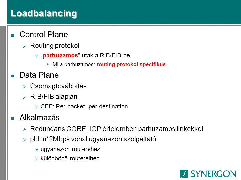 Loadbalancing Control Plane Data Plane Alkalmazás Routing protokol