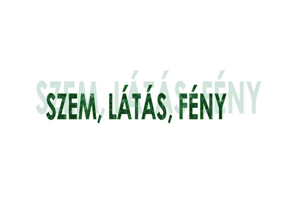 SZEM, LÁTÁS, FÉNY