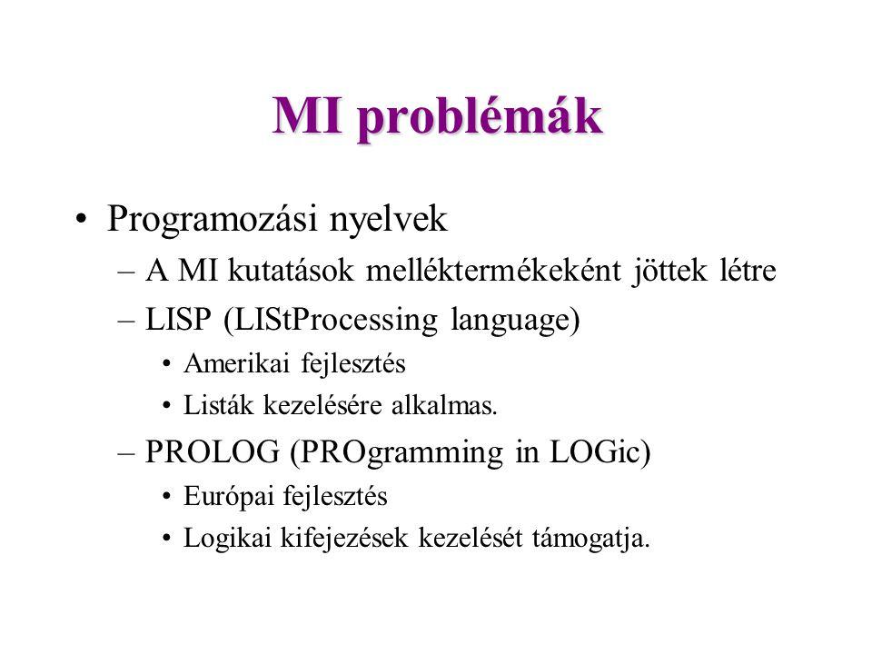 MI problémák Programozási nyelvek
