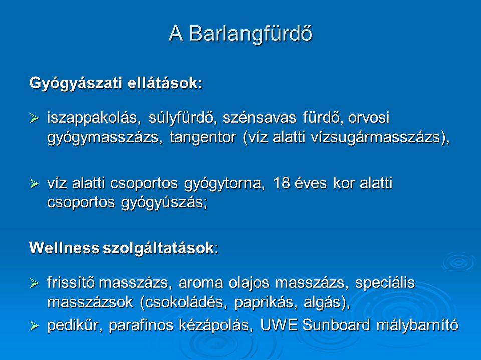 A Barlangfürdő Gyógyászati ellátások: