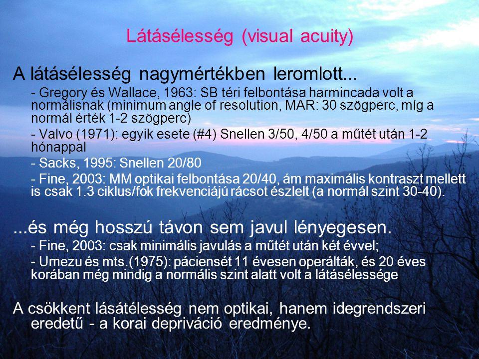 Látásélesség (visual acuity)