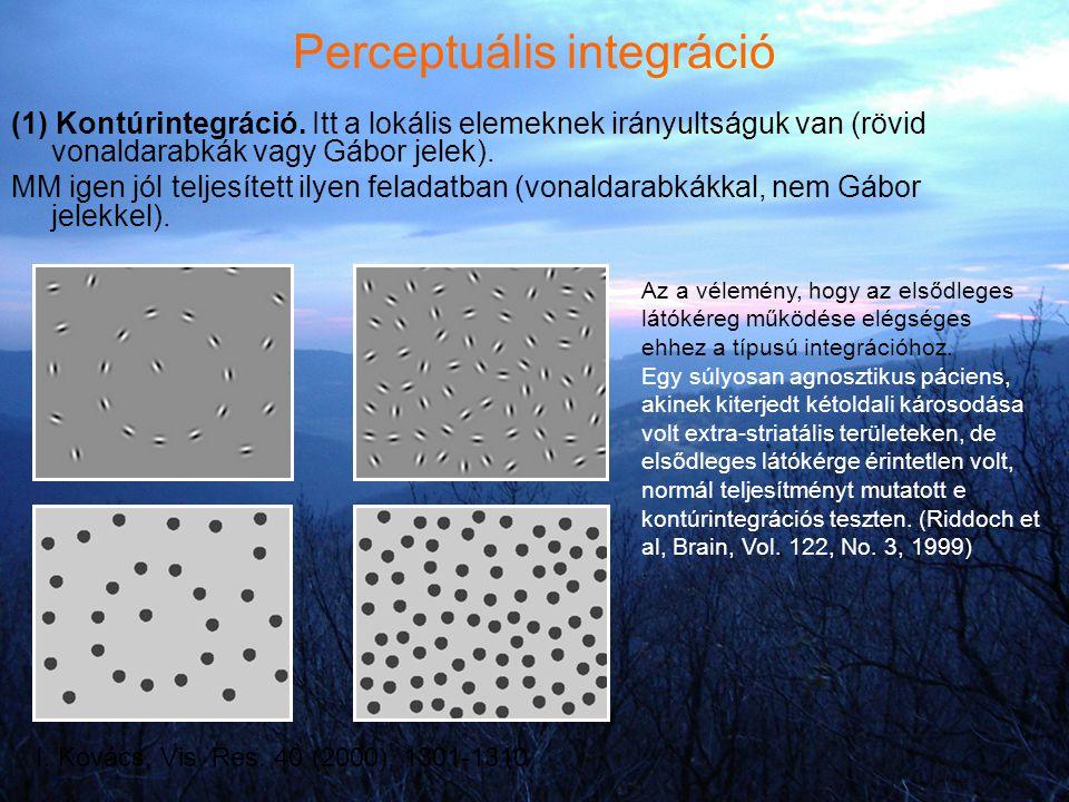 Perceptuális integráció