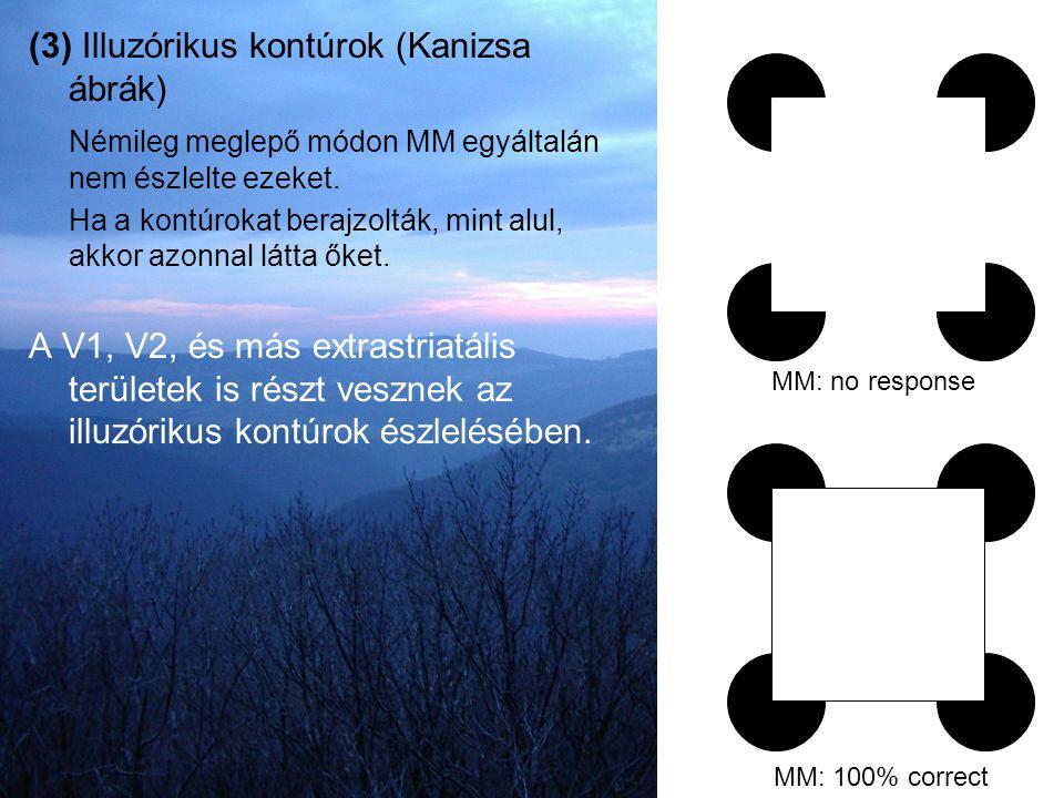 (3) Illuzórikus kontúrok (Kanizsa ábrák)
