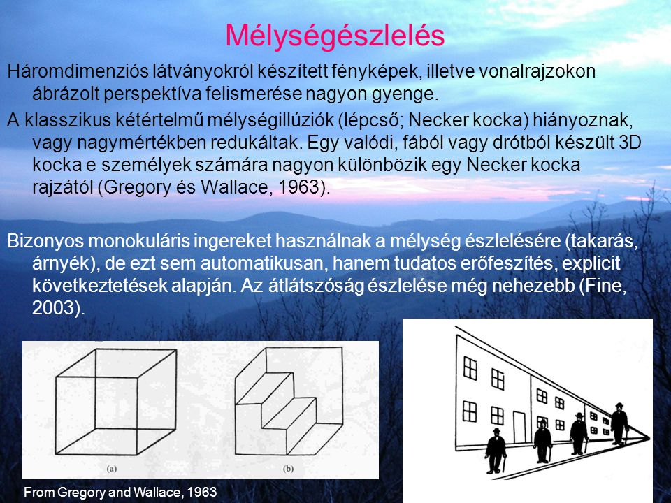 Mélységészlelés Háromdimenziós látványokról készített fényképek, illetve vonalrajzokon ábrázolt perspektíva felismerése nagyon gyenge.