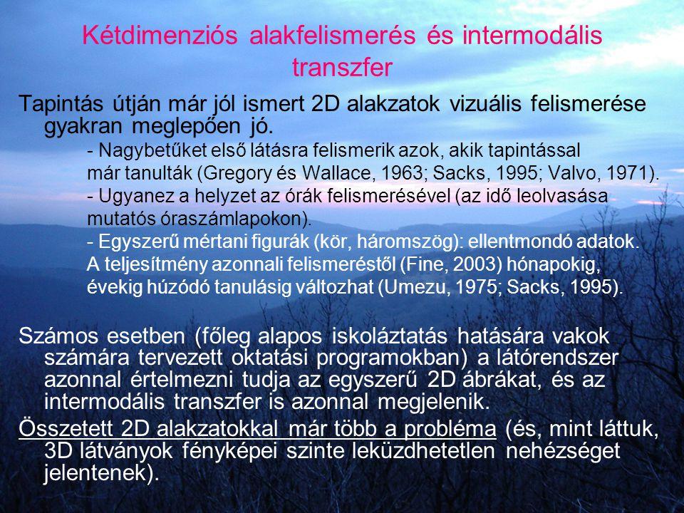 Kétdimenziós alakfelismerés és intermodális transzfer