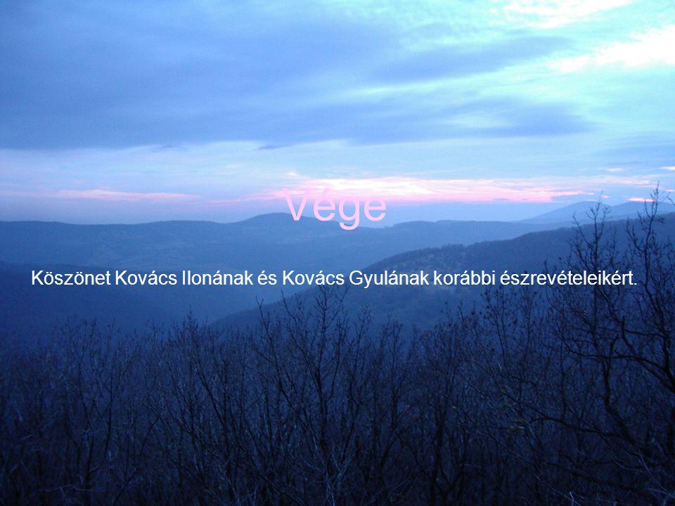 Köszönet Kovács Ilonának és Kovács Gyulának korábbi észrevételeikért.