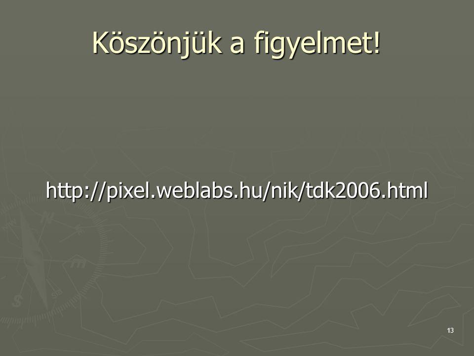 Köszönjük a figyelmet! http://pixel.weblabs.hu/nik/tdk2006.html