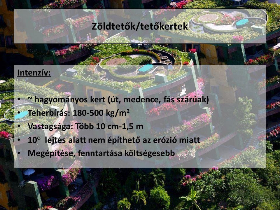 Zöldtetők/tetőkertek
