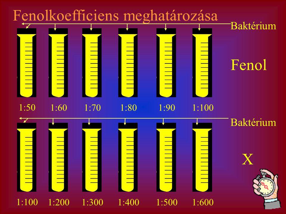 Fenolkoefficiens meghatározása