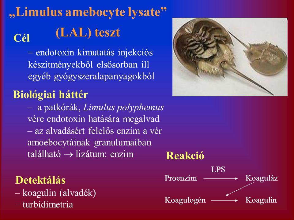 """""""Limulus amebocyte lysate (LAL) teszt"""