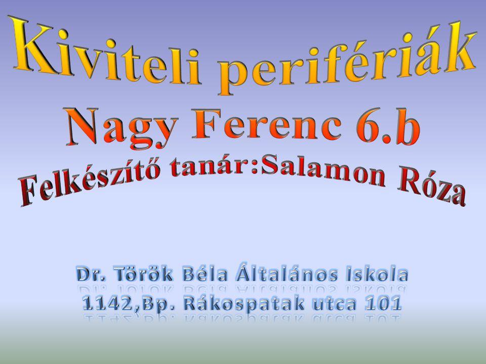 Kiviteli perifériák Nagy Ferenc 6.b Felkészítő tanár:Salamon Róza