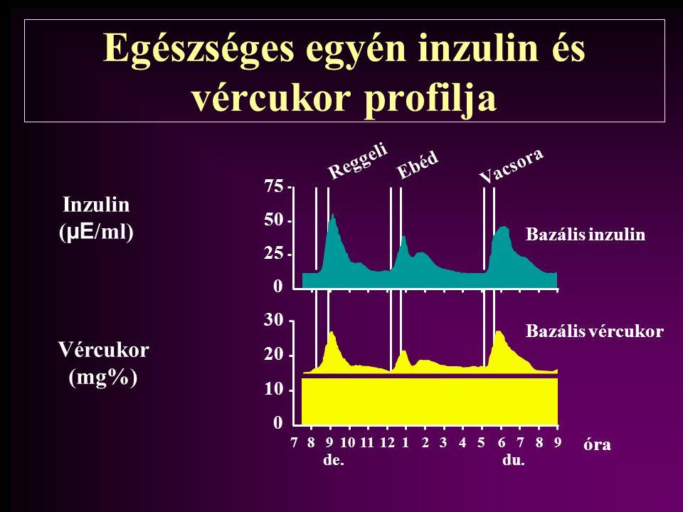 Egészséges egyén inzulin és vércukor profilja