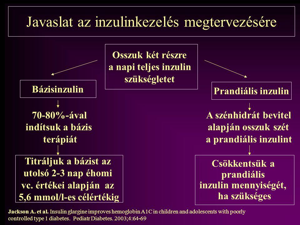 Javaslat az inzulinkezelés megtervezésére
