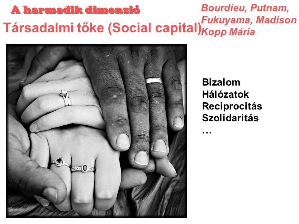 Társadalmi tőke (Social capital)