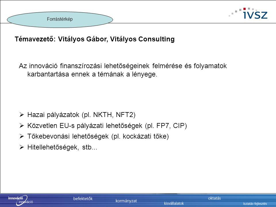 Témavezető: Vitályos Gábor, Vitályos Consulting