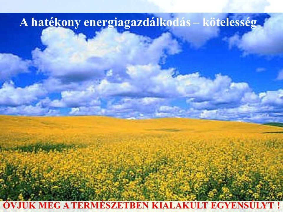 A hatékony energiagazdálkodás – kötelesség