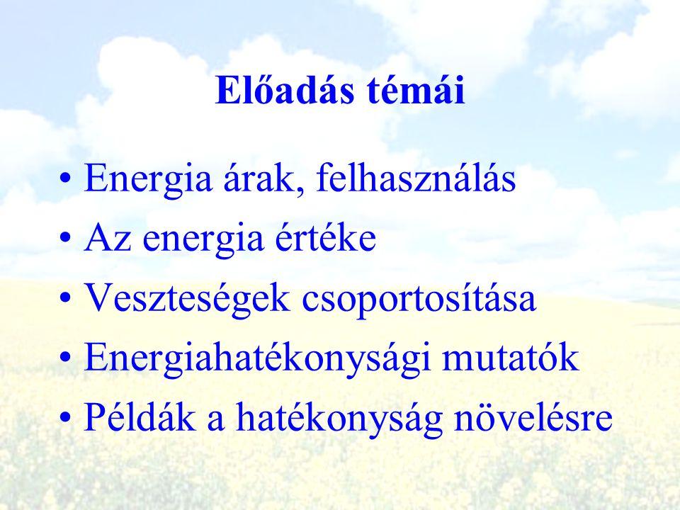 Előadás témái Energia árak, felhasználás. Az energia értéke. Veszteségek csoportosítása. Energiahatékonysági mutatók.