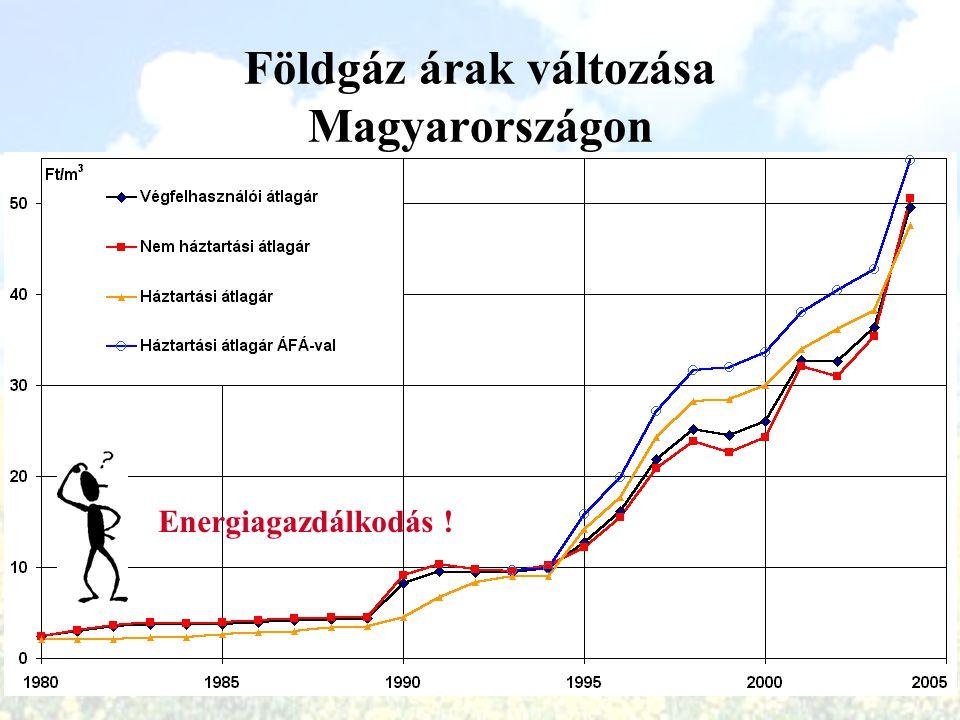 Földgáz árak változása Magyarországon 1980-2004 (HUF)