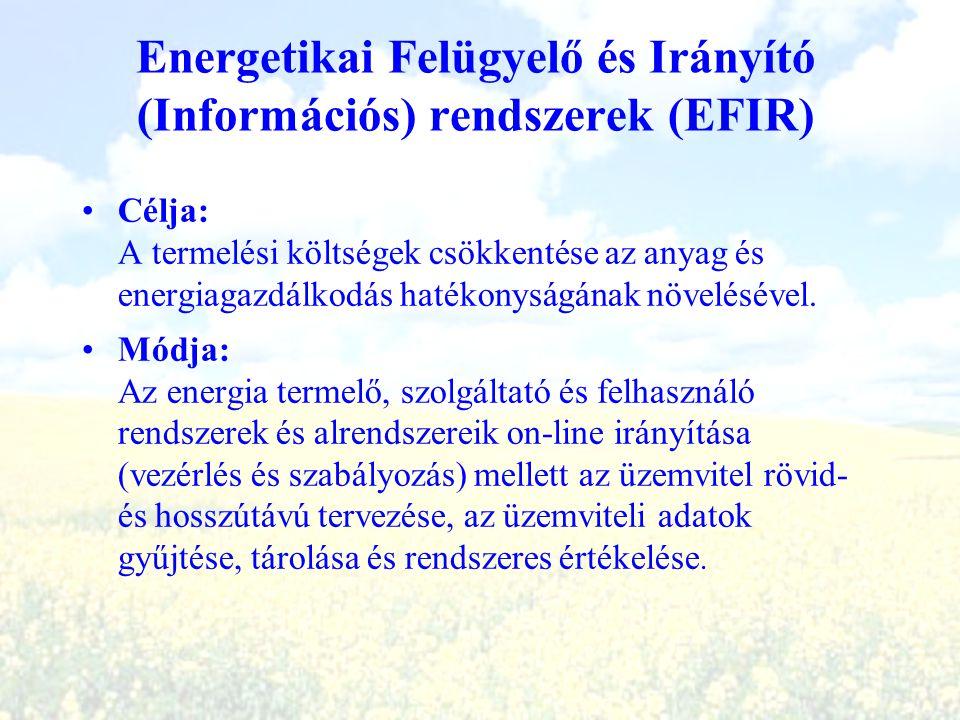 Energetikai Felügyelő és Irányító (Információs) rendszerek (EFIR)