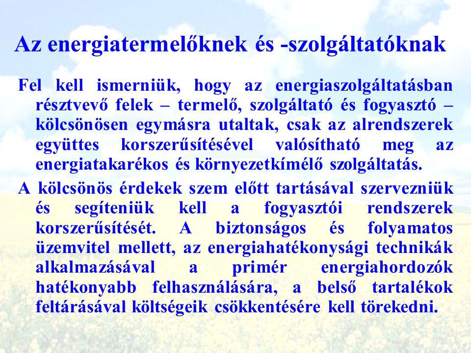 Az energiatermelőknek és -szolgáltatóknak