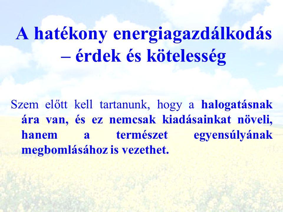 A hatékony energiagazdálkodás – érdek és kötelesség