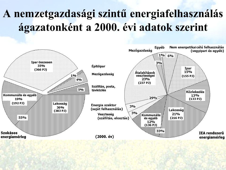 A nemzetgazdasági szintű energiafelhasználás ágazatonként a 2000