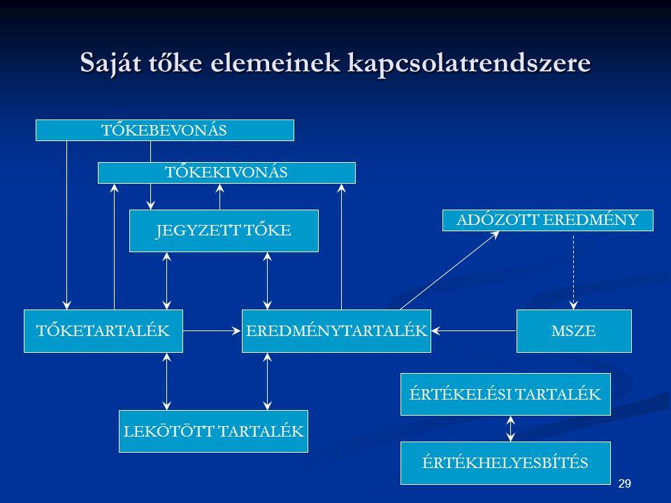 Saját tőke elemeinek kapcsolatrendszere