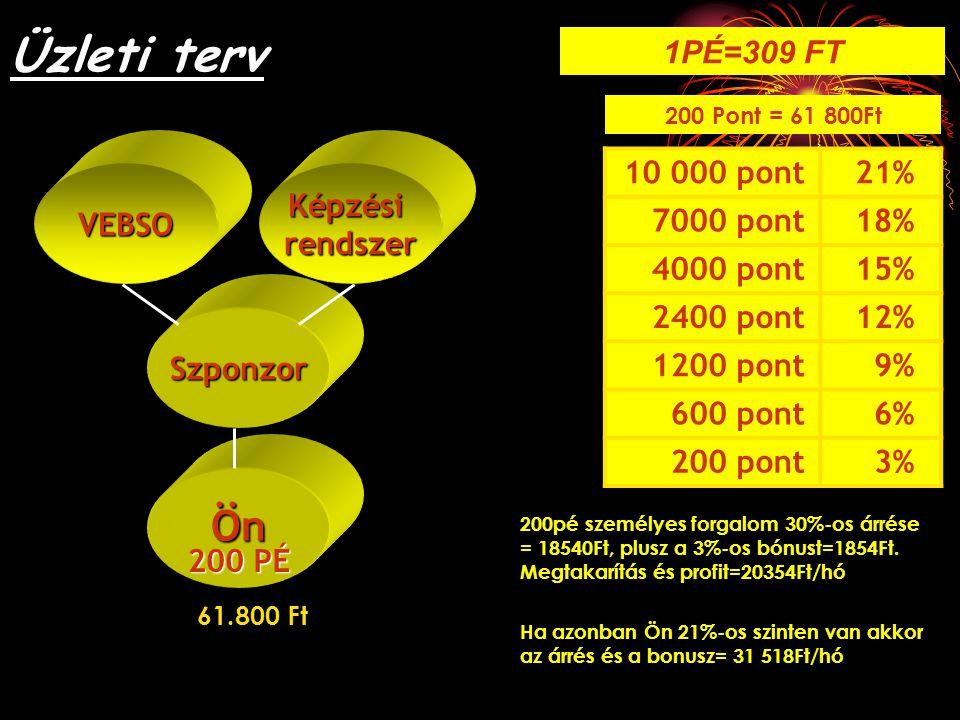 Üzleti terv Ön 1PÉ=309 FT 21% 10 000 pont 18% 7000 pont 15% 4000 pont