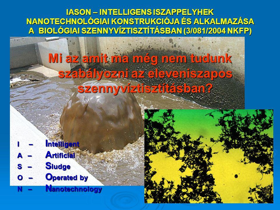 IASON – INTELLIGENS ISZAPPELYHEK NANOTECHNOLÓGIAI KONSTRUKCIÓJA ÉS ALKALMAZÁSA A BIOLÓGIAI SZENNYVÍZTISZTÍTÁSBAN (3/081/2004 NKFP)