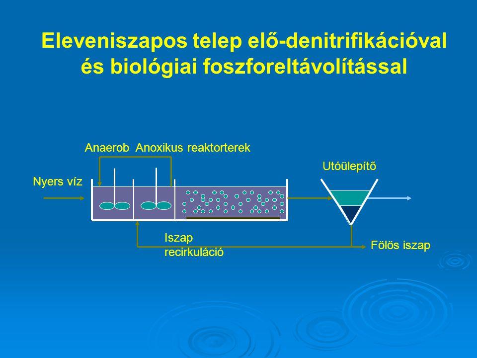Anoxikus reaktorterek