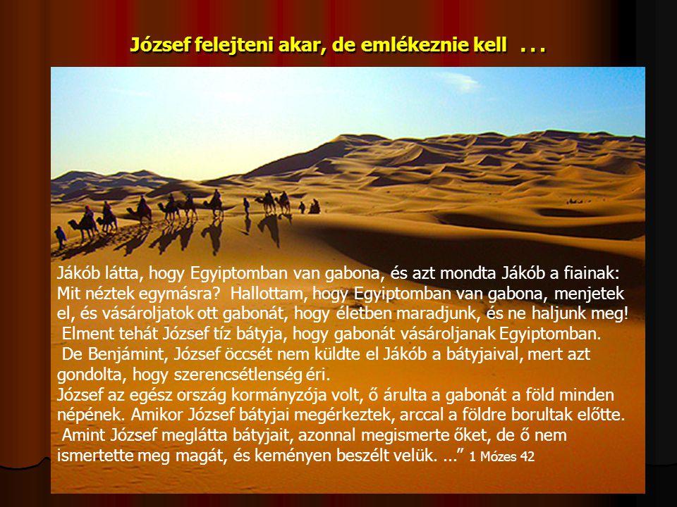 József felejteni akar, de emlékeznie kell …
