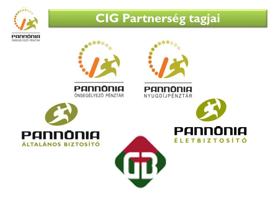 CIG Partnerség tagjai