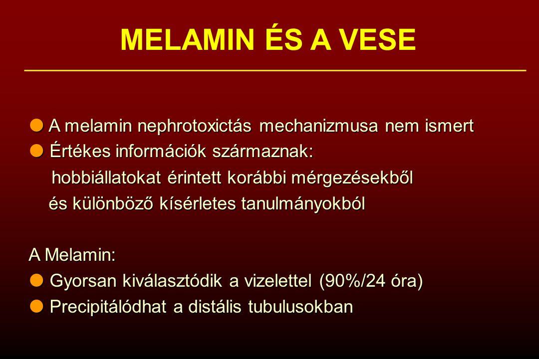 MELAMIN ÉS A VESE  A melamin nephrotoxictás mechanizmusa nem ismert