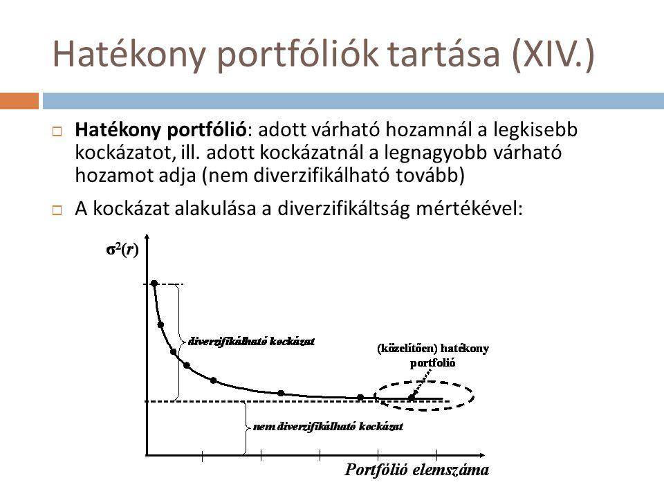 Hatékony portfóliók tartása (XIV.)