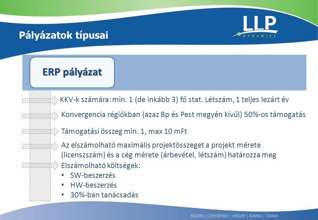 ERP pályázat Pályázatok típusai