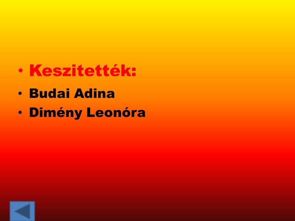 Keszitették: Budai Adina Dimény Leonóra