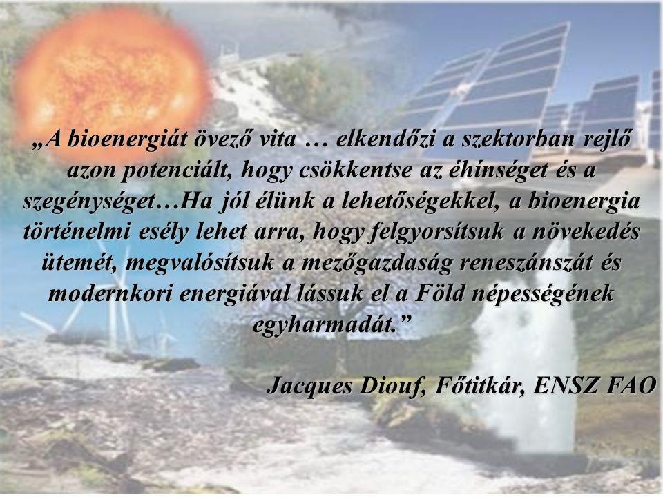 """""""A bioenergiát övező vita … elkendőzi a szektorban rejlő azon potenciált, hogy csökkentse az éhínséget és a szegénységet…Ha jól élünk a lehetőségekkel, a bioenergia történelmi esély lehet arra, hogy felgyorsítsuk a növekedés ütemét, megvalósítsuk a mezőgazdaság reneszánszát és modernkori energiával lássuk el a Föld népességének egyharmadát."""