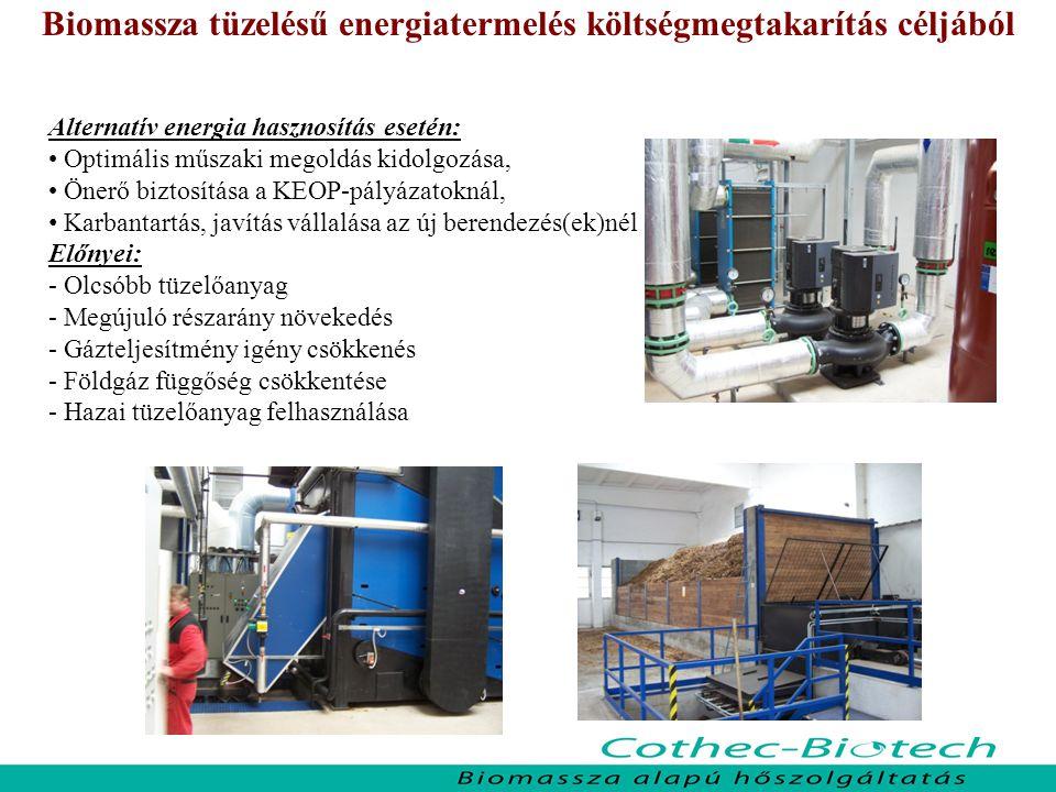 Biomassza tüzelésű energiatermelés költségmegtakarítás céljából
