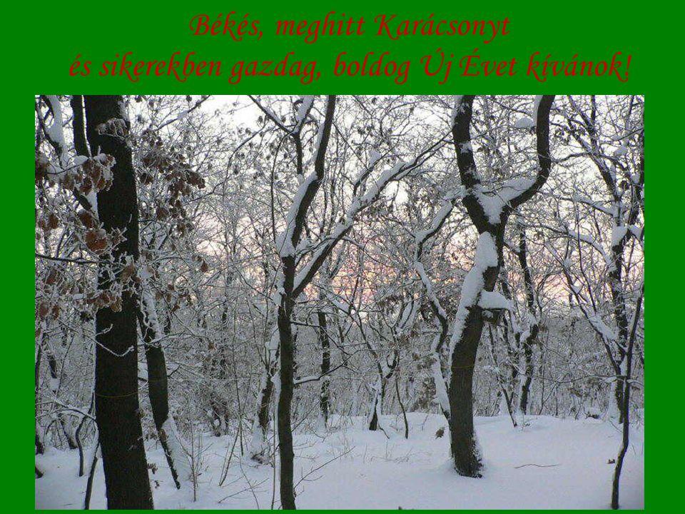 Békés, meghitt Karácsonyt és sikerekben gazdag, boldog Új Évet kívánok!