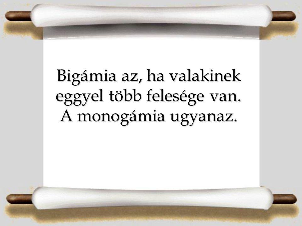 Bigámia az, ha valakinek eggyel több felesége van. A monogámia ugyanaz.