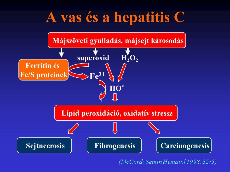 A vas és a hepatitis C Fe2+ Májszöveti gyulladás, májsejt károsodás