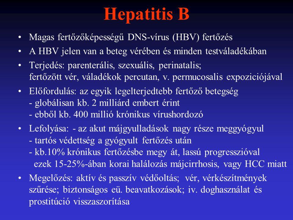 Hepatitis B Magas fertőzőképességű DNS-vírus (HBV) fertőzés