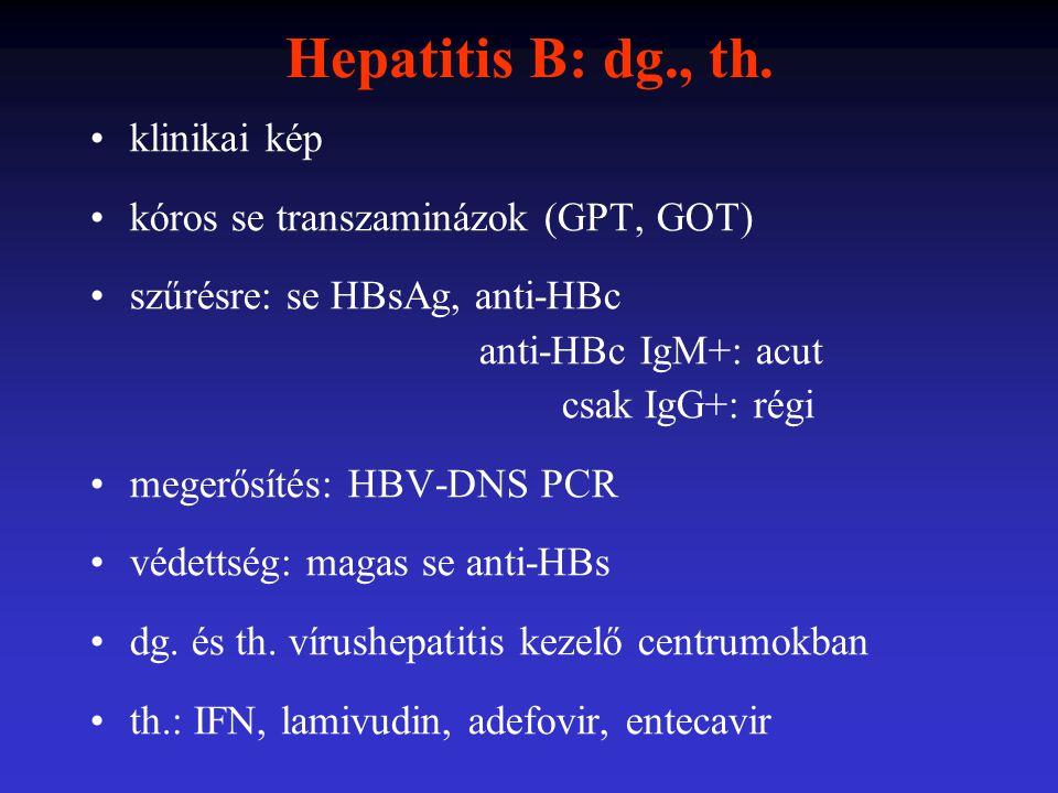 Hepatitis B: dg., th. klinikai kép kóros se transzaminázok (GPT, GOT)